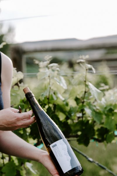 Farmer and winemaker, Jayme Henderson, of The Storm Cellar is showcasing her newly bottled Riesling in front of the green vines that provided the grapes.